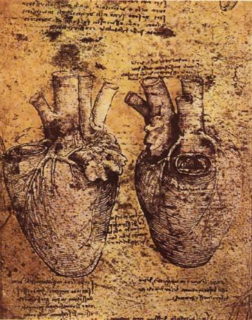 Leonardo Heart