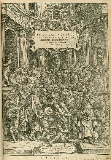 Vesalius De Humani Corporis Fabrica 1543