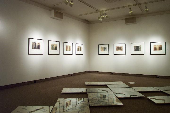 Catherine Stewart, installation view