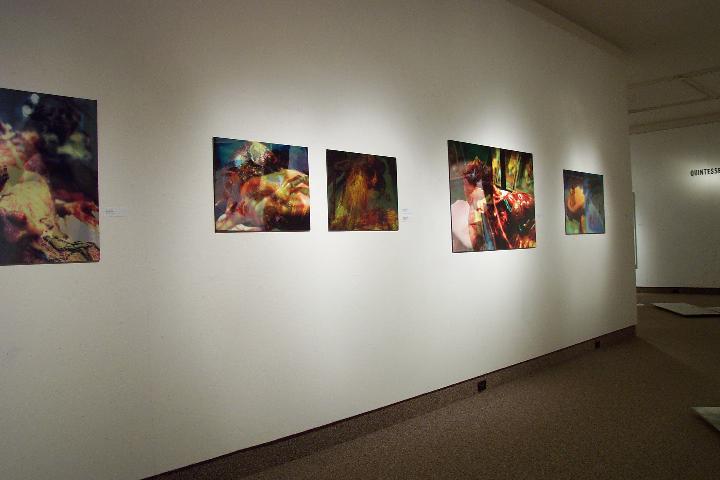 Lisa MacLean installation view